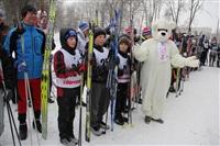 Открытие лыжероллерной трассы в Новомосковске, Фото: 2