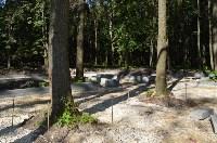 В Щёкино благоустраивают парк «Лесная поляна», Фото: 8