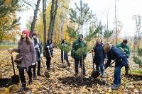 В Центральном парке Тулы появился сосновый бор «Слободы», Фото: 45