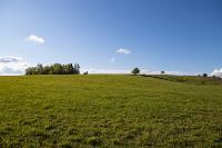 Тишина, солнце и бесконечный простор: 90 красивых фото с родины слонов – Одоевского района, Фото: 37