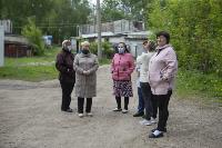 В Тульской области Богородицкий район атаковали мошки, Фото: 8