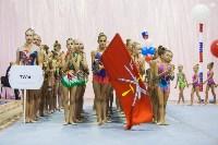 Открытый кубок региона по художественной гимнастике, Фото: 56