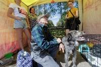 Фестиваль помощи животным в Центральном парке, Фото: 12