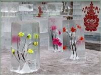 Ледяные скульптуры, Фото: 4