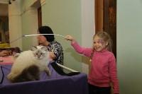 Выставка кошек. 21.12.2014, Фото: 32
