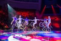 Тульский цирк, Фото: 38