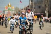 В семейном велопараде приняли участие сотни туляков , Фото: 55