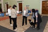 """Выставки собак в ДК """"Косогорец"""", Фото: 31"""
