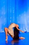 В Туле показали шоу восточных танцев, Фото: 30