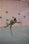 IX Всероссийский турнир по художественной гимнастике «Старая Тула», Фото: 39