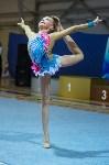 Соревнования по художественной гимнастике 31 марта-1 апреля 2016 года, Фото: 62