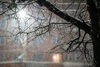Апрельский снегопад - 2021, Фото: 21