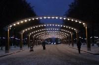 Тульские парки украсили к Новому году, Фото: 14