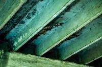 Рейд Myslo: в каком состоянии Тульские мосты, Фото: 15