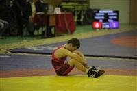 Представительный турнир по греко-римской борьбе. 16 ноября 2013, Фото: 6