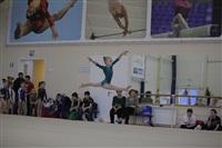 Открытый турнир по спортивной гимнастике. 23-30 ноября 2013, Фото: 2