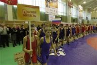 Представительный турнир по греко-римской борьбе. 16 ноября 2013, Фото: 7