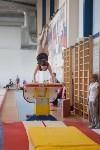 Первенство ЦФО по спортивной гимнастике среди юниорок, Фото: 12