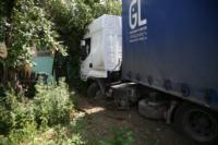 В Барсуках фура влетела в огород и сломала дерево, Фото: 11