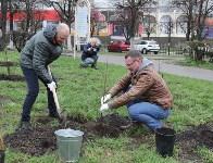 В сквере «Тульское чаепитие» высадили 100 саженцев вишни, Фото: 3