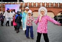 В Тульском кремле открылась новогодняя елка, Фото: 9