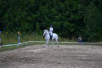 В Ясной поляне стартовал турнир по конному спорту, Фото: 142