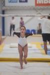 Первенство ЦФО по спортивной гимнастике, Фото: 117